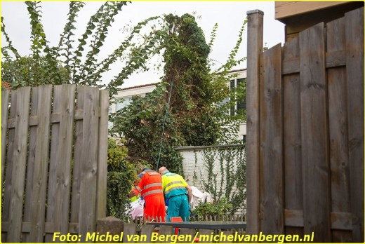 20140923_tulpen_03-BorderMaker