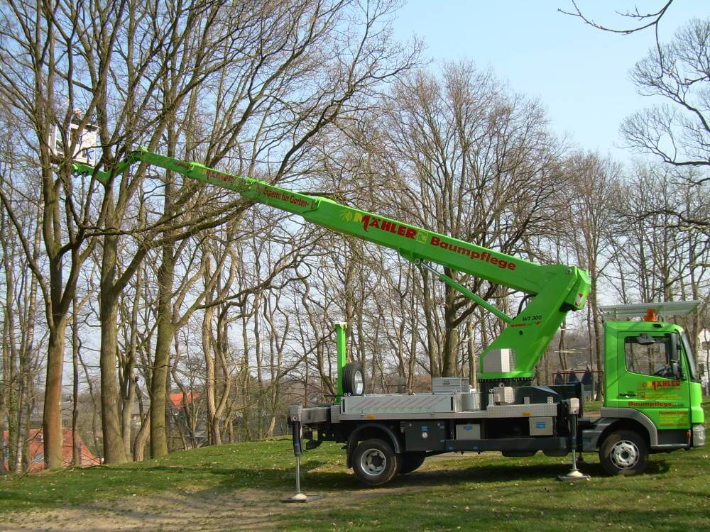 Arbeiten in der Baumpflege