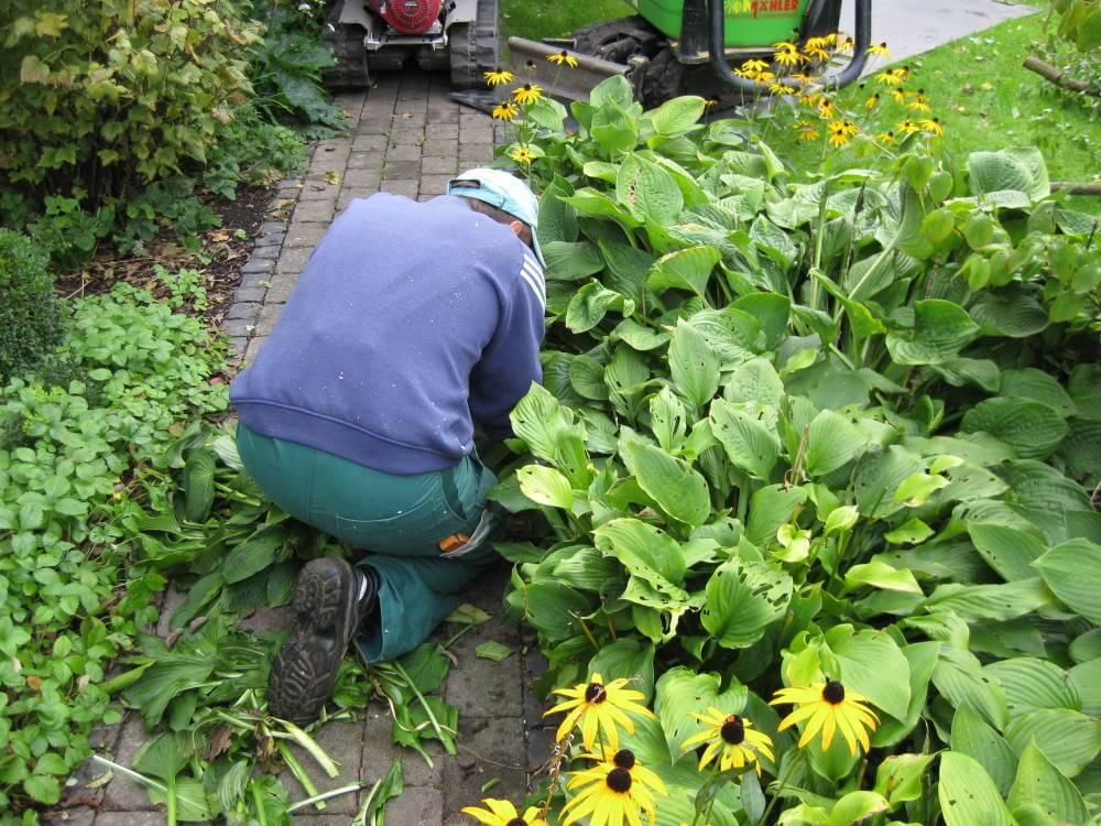 Das Pflegen von privatem Grün