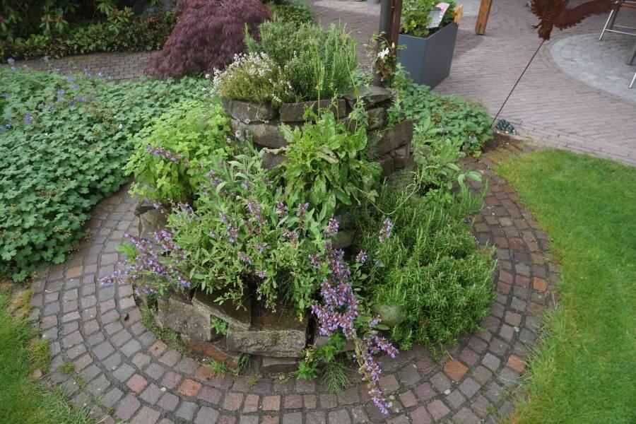 Kräuterspirale Garten