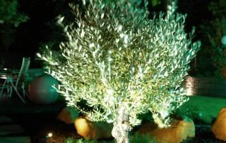 LED Vorgartenbeleuchtung