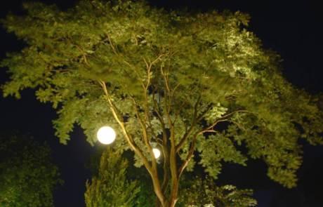 Moonlight Pendelleuchte im Baum