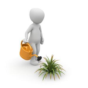 comment devenir jardinier botaniste travail a domicile. Black Bedroom Furniture Sets. Home Design Ideas