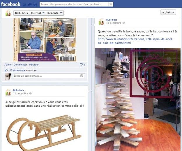 Facebook BLB-bois