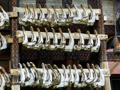 Tana Toraja - traditional house decoration with buffalo jaws Christian Jansen & Maria Düerkop