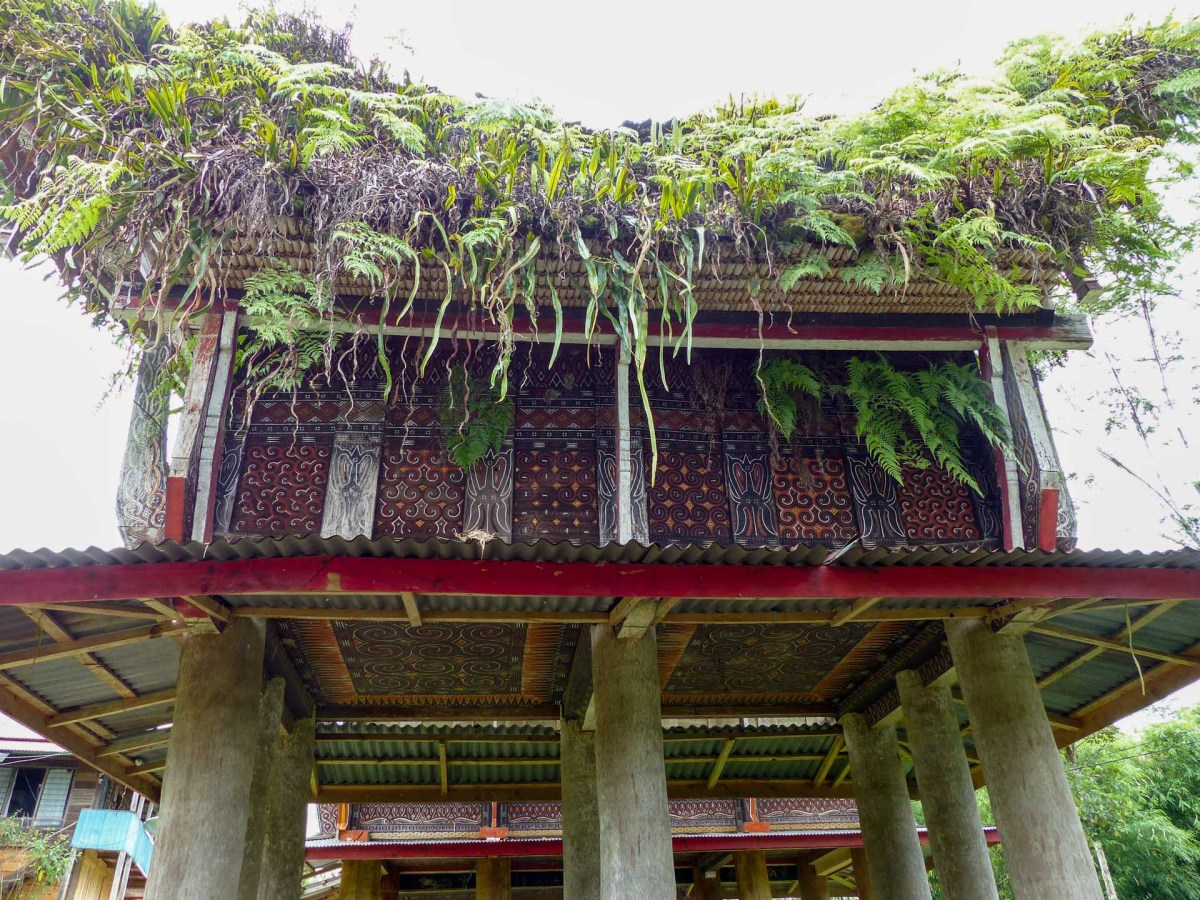 Tana Toraja - traditional house with green roof Christian Jansen & Maria Düerkop