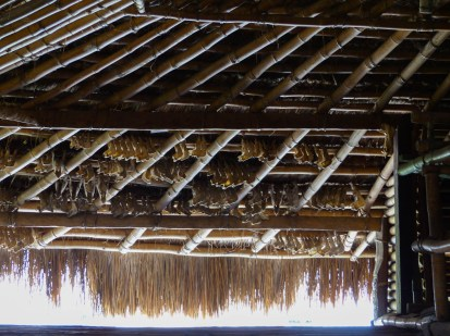 Sumba - pig jaw bones decorating the roof of a traditional house Christian Jansen & Maria Düerkop