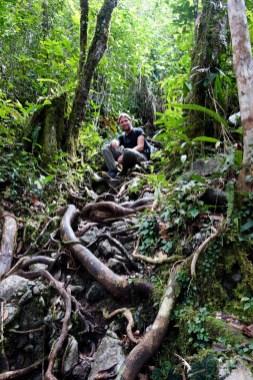 Mulu National Park - trek to pinnacles Christian Jansen & Maria Düerkop