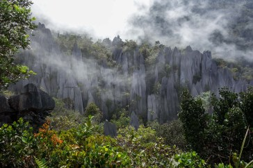 Mulu National Park - the pinnacles in the clouds Christian Jansen & Maria Düerkop