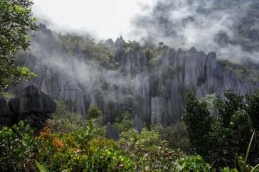 Mulu National Park - the pinnacles in the clouds Christian Jansen & Maria Düerkop