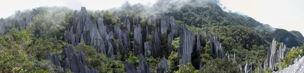 Mulu National Park - the Pinnacles panorama Christian Jansen & Maria Düerkop