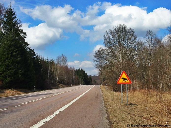 Elk sign in Sweden.