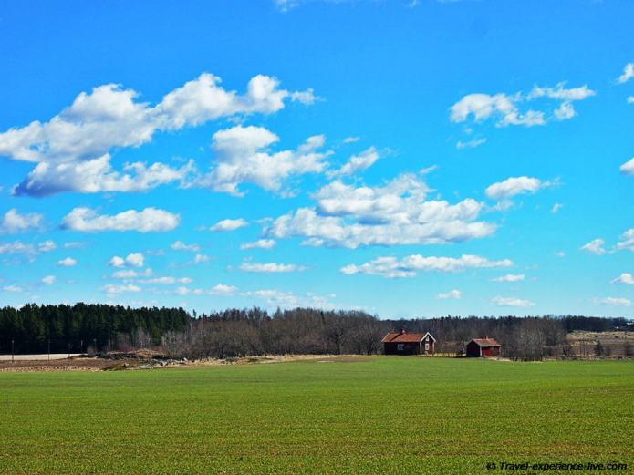 Green field in Sweden.