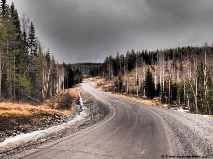 Gravel road in forest, Sweden.