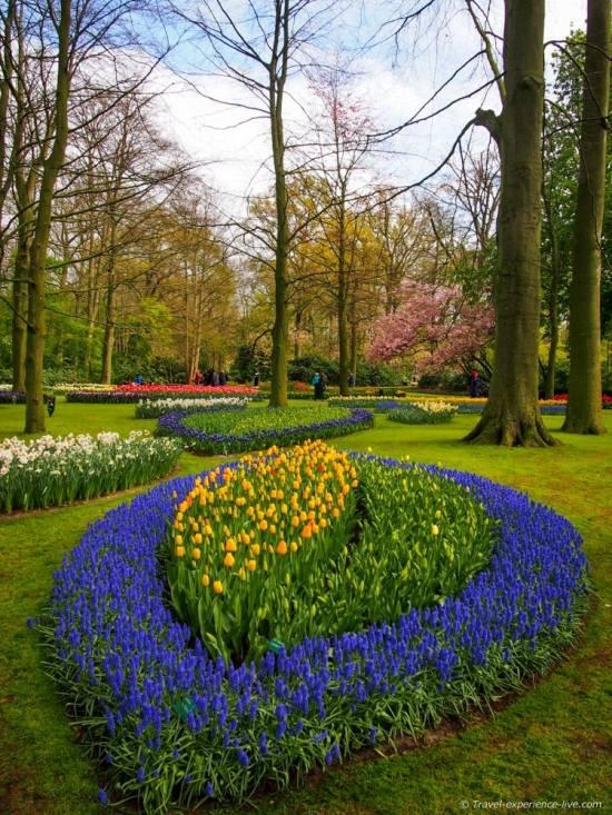 Gardens in Keukenhof, Netherlands.
