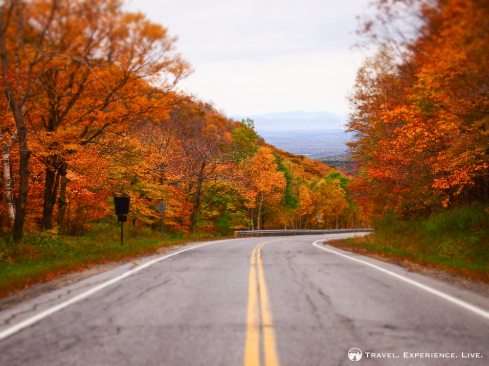 Stunning fall foliage in the Green Mountains, Vermont