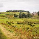 Picturesque Farmstead