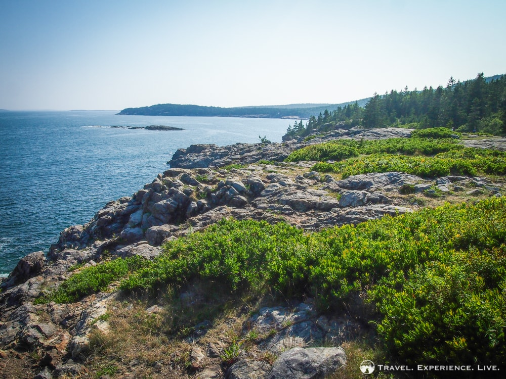 What to Do in Acadia National Park: Great Head Trail