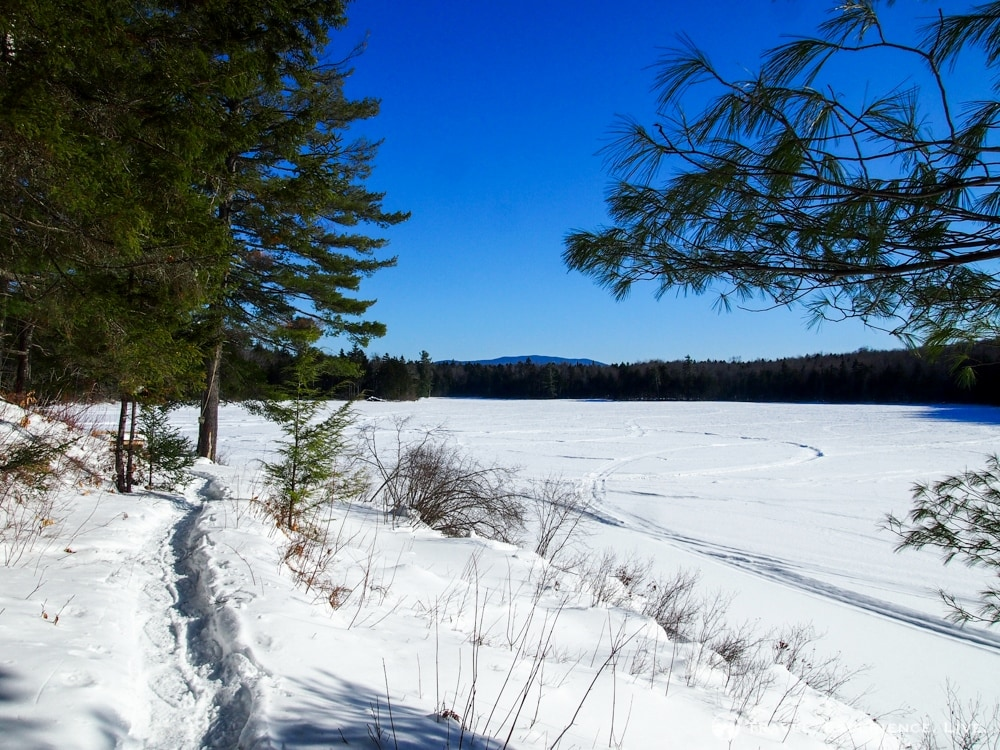 Wichapauka Pond, New Hampshire