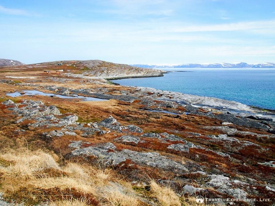 An Arctic landscape