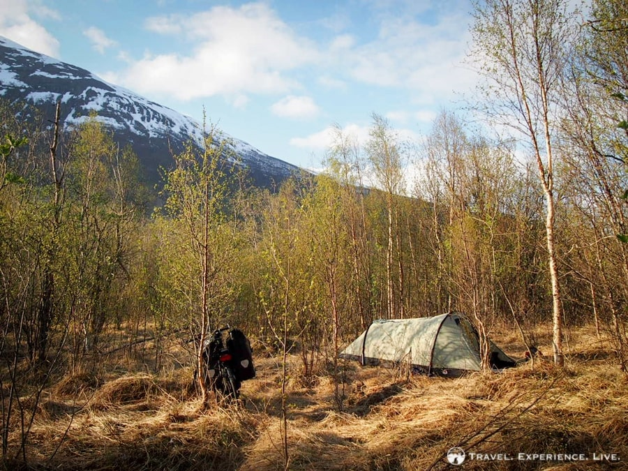 Camping in the woods, northern Norway
