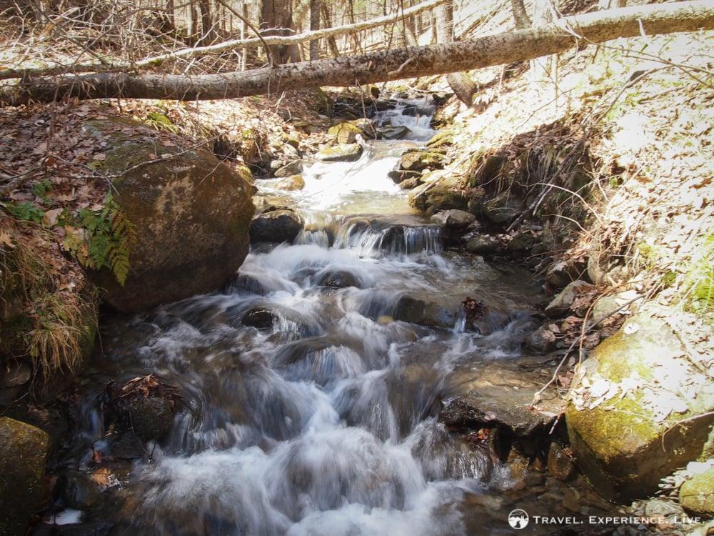 Stream on Bald Top Mountain, Vermont
