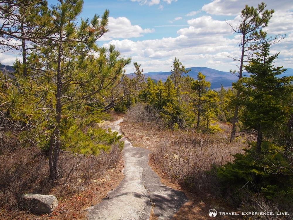 Hiking Blueberry Mountain