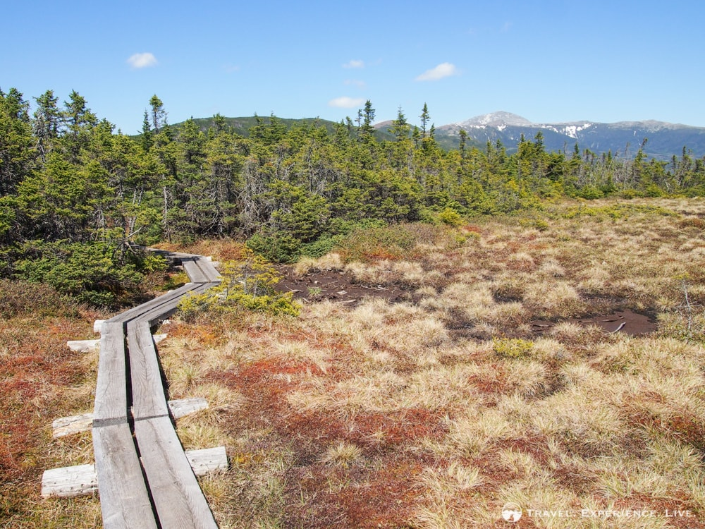 Boardwalk on the Mount Webster-Mount Jackson Loop, Presidential Range