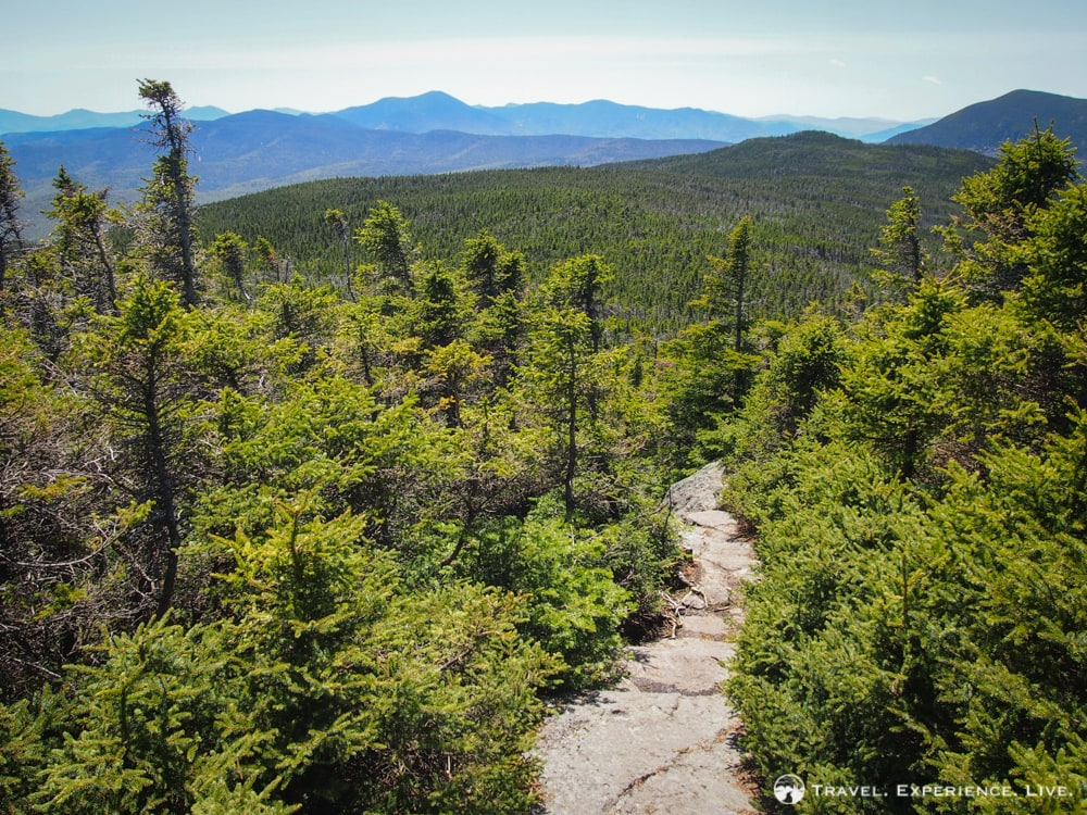 Trail between the summits of Mount Webster and Mount Jackson, New Hampshire