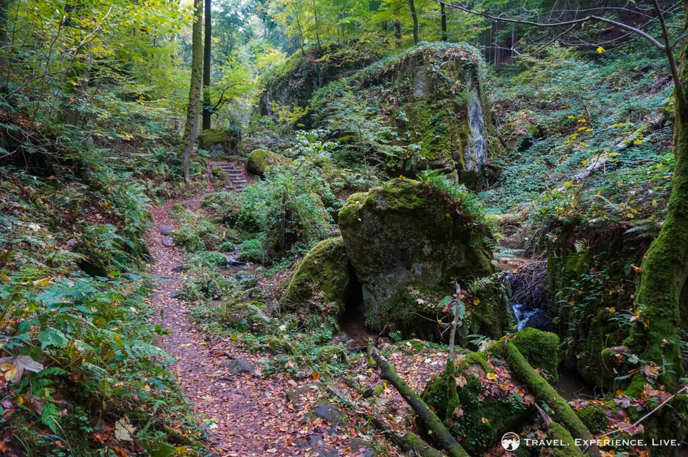 Hiking the Müllerthal Trail, Luxembourg