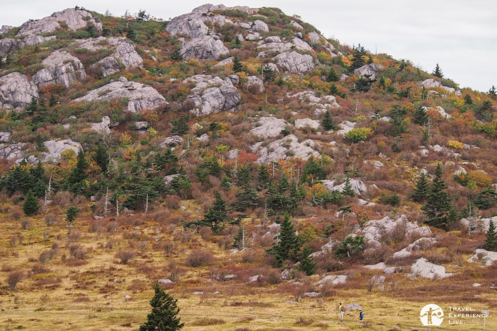 Father and son hiking in Grayson Highlands, Virginia