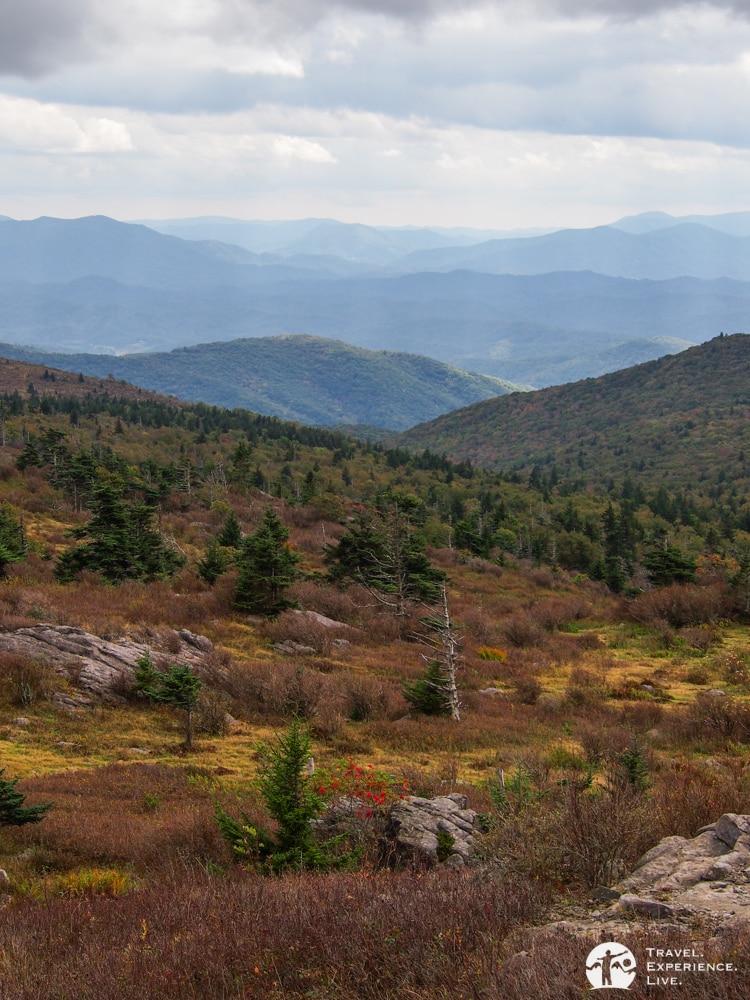 Landscape in Virginia's Grayson Highlands