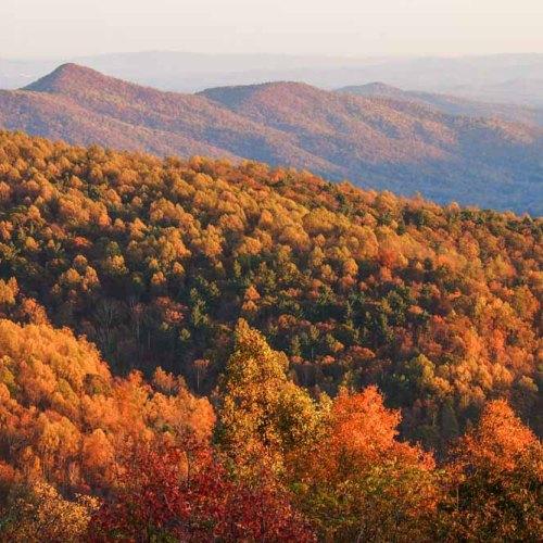 Fall landscape in Shenandoah National Park