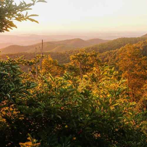 Golden sunrise in Shenandoah National Park