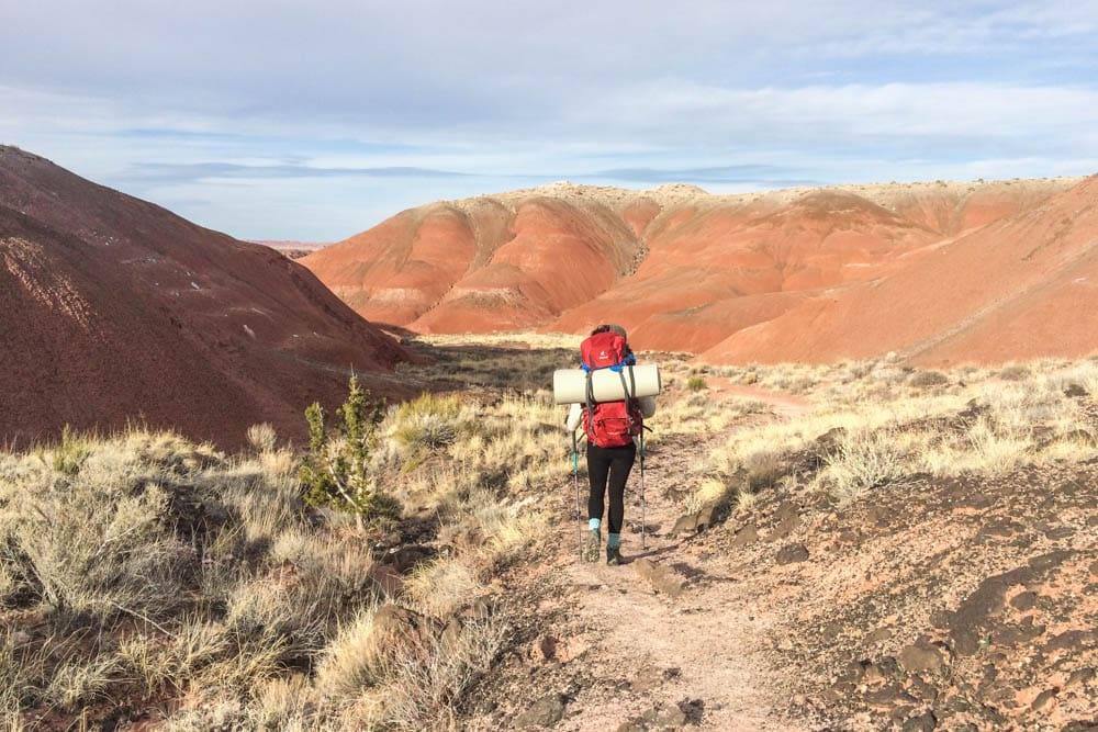 Hiker in Petrified Forest National Park, Arizona