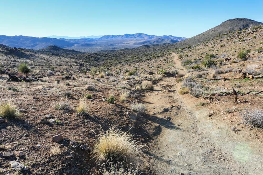 Hiking trail in Joshua Tree National Park