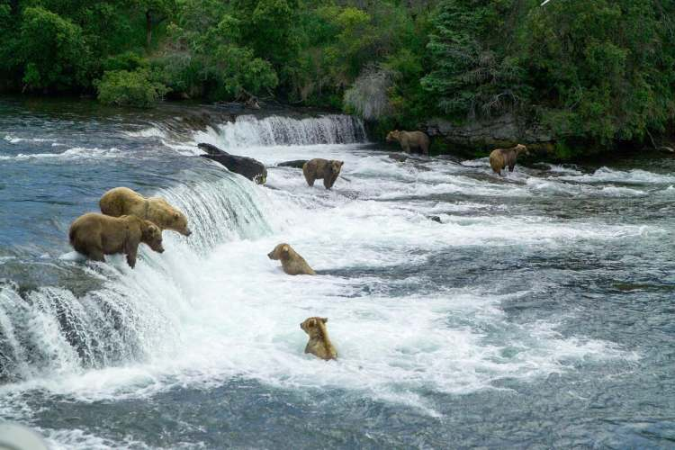 Katmai National Park, Alaska - Least-Visited and Most Underrated National Parks in America