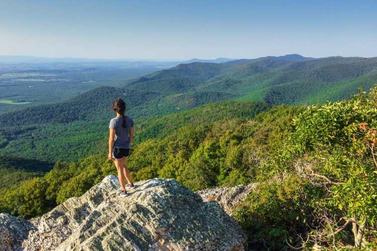 Turk Mountain - Best Day Hikes in Shenandoah National Park