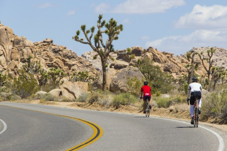 Cycling in Joshua Tree National Park - Popular Activities in Joshua Tree National Park