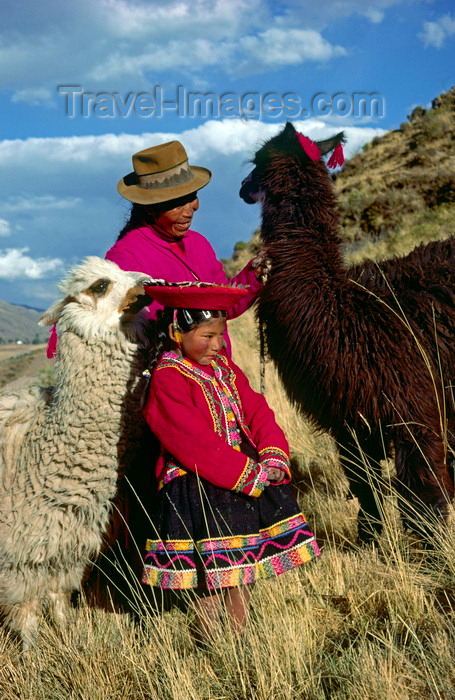 peru137: Cuzco region, Peru: Quechua girl with her grandmother and llamas- bucolic scene - Peruvian Andes - photo by C.Lovell - (c) Travel-Images.com - Stock Photography agency - Image Bank
