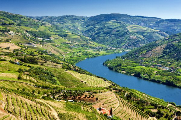 Douro Valley - Portugal Travel Guide