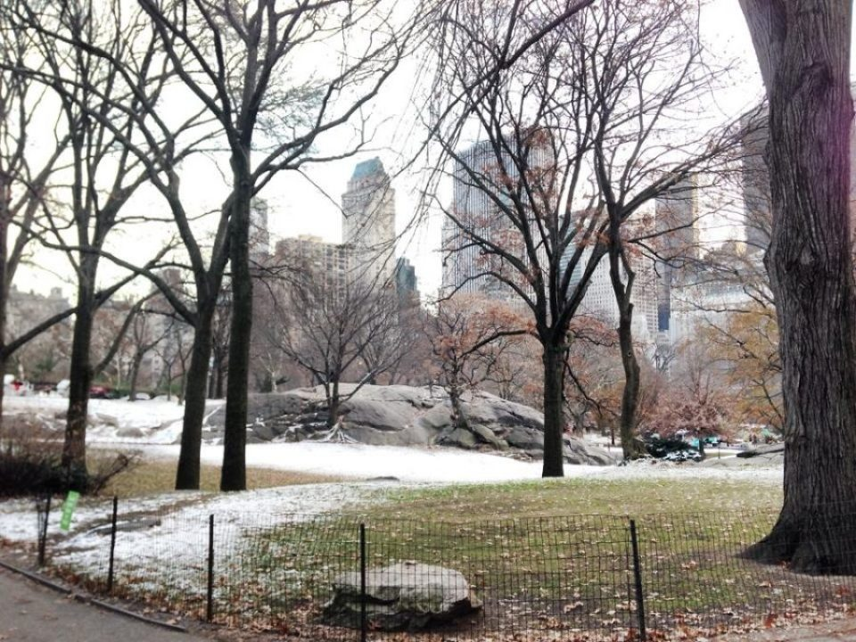 Central Park sous la neige © Travel-me-happy.com