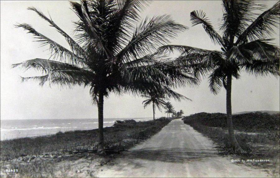 ancienne-photo-miami-collins-avenue-1924