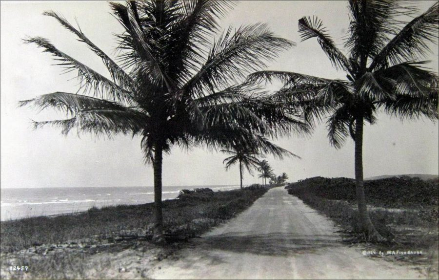 ancienne-photo-miami-collins-avenue-1924