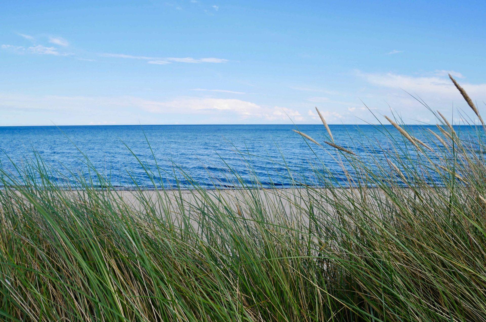 Himmel, Meer, Sand und Dünengras