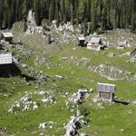 travel-slovenia-mountain-pasture-view
