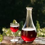 travel-slovenia-cvicek-wine2