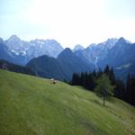 travel-slovenia-landscape-parks