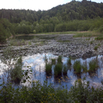 travel-slovenia-ponds