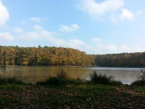 Bukovnica lake